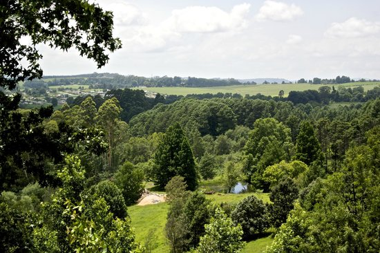 Pleasant Places Guesthouse: View from B&B over Lidgetton Valley