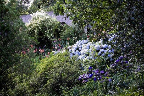 Pleasant Places Guesthouse: Part of Sumptuous Gardens