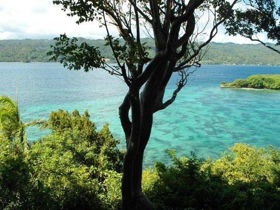 Luxury Bahia Principe Cayo Levantado Don Pablo Collection : View From 11204