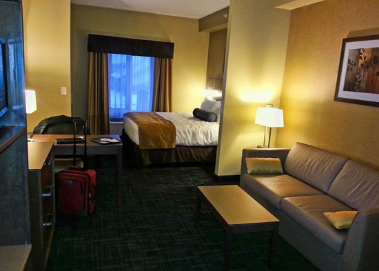 BEST WESTERN PLUS Winnipeg West : King suite
