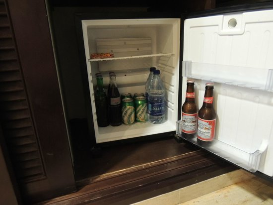 TRS Turquesa Hotel: Refrigerator stocked every day