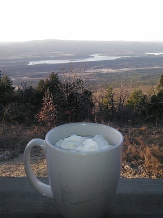 The Lodge at Mount Magazine: Cabin view