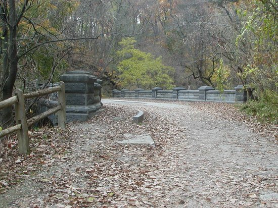 Wissahickon Valley Park : Near the eastern portion of the Forbidden Drive