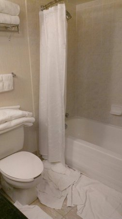 Sheraton on the Falls: washroom tub side