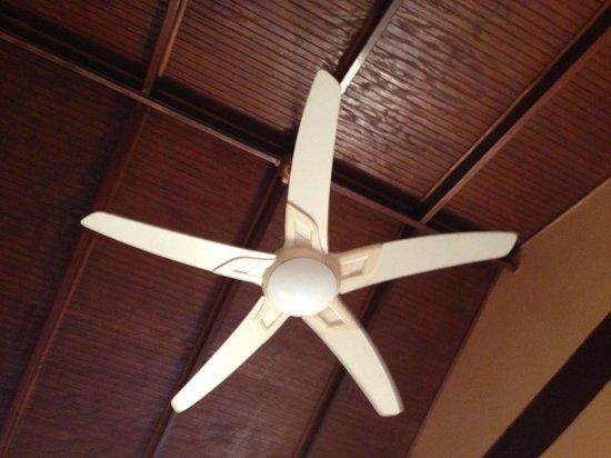 Native Abode: Ceiling Fan