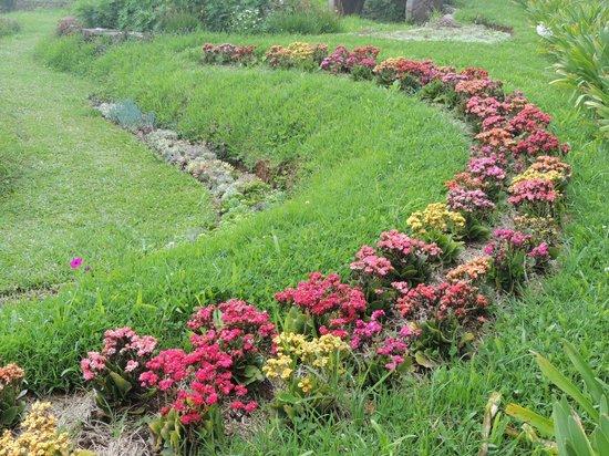 Amantikir: Um dos primeiros jardins.