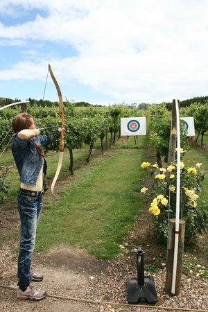 Ilha Waiheke, Nova Zelândia: Fun with a little bit of a competitive element - perfect...