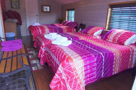 Mountain Thyme Getaway : Two twin beds and a double with your own Bath with Shower.