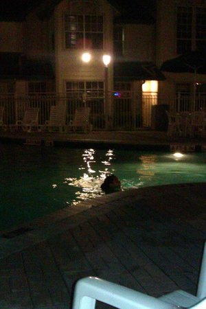 Oak Plantation Resort : pool at night