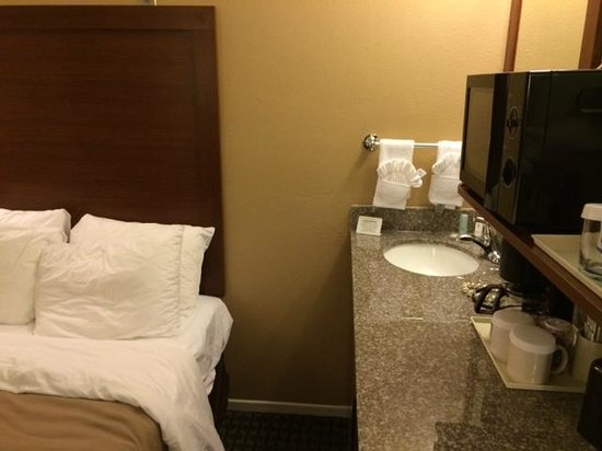 Comfort Inn Gaslamp / Convention Center : Single double bed room with sink next to bed!!