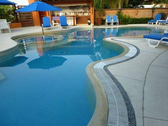 Villa Carolina Hotel: Pool and bar