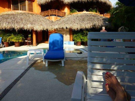 Villa Carolina Hotel: Poolside