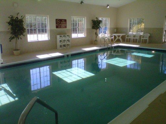 Best Western Windsor Inn & Suites: Newly Renovated Pool (01/20/14)