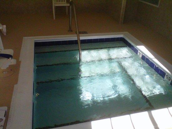 Best Western Windsor Inn & Suites: Whirlpool/Spa