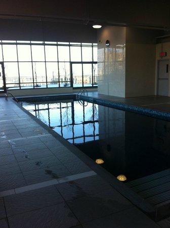 Hilton Garden Inn Montreal Centre-ville: Swimming pool