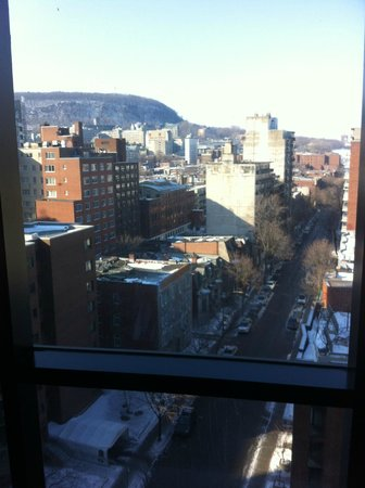 Hilton Garden Inn Montreal Centre-ville: View from the pool