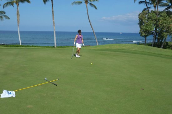 Mauna Lani Bay Hotel & Bungalows: North Course