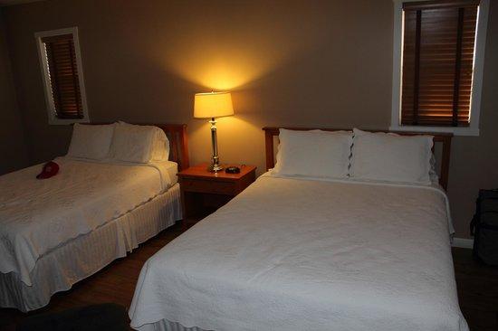 Dahlonega Spa Resort : View of beds