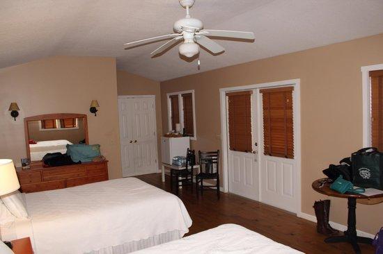 Dahlonega Spa Resort : View of entire room