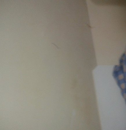 Newcastle Rooms: Bedroom wall, Dirty marks