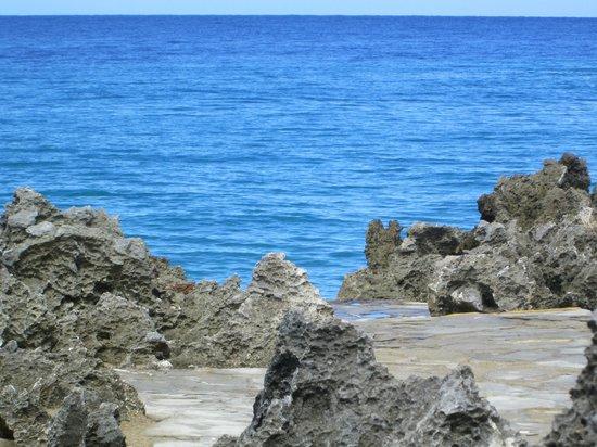 Casa Marina Beach: mer