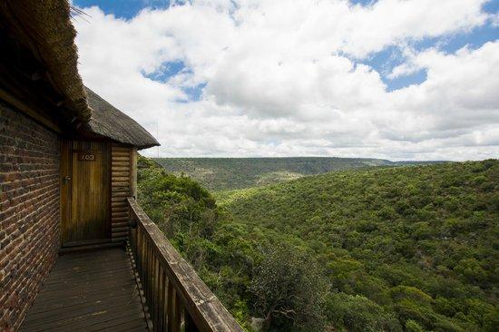 Ravineside Lodge: Udsigten fra væreslet