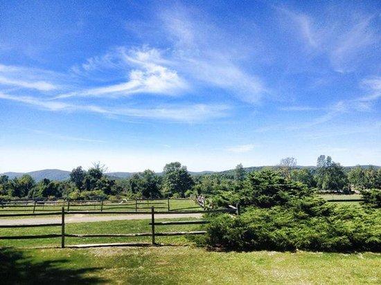 Stonecrop Gardens : Sky