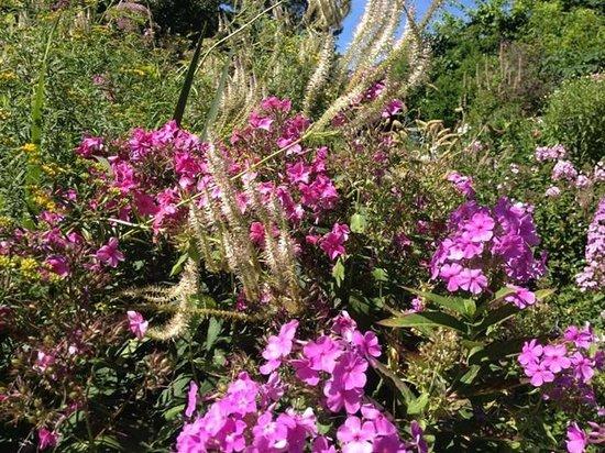 Stonecrop Gardens : Flower garden