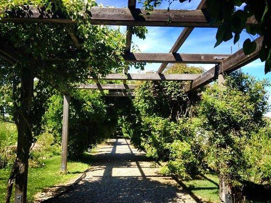 Stonecrop Gardens: Pathway