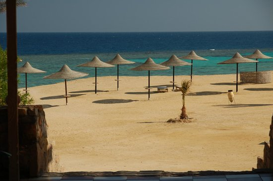 Wadi Lahmy Azur Resort: Spiaggia vista dal ristorante
