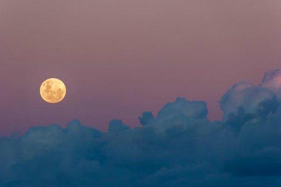 moonrise, Eden House
