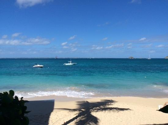 Le Petit Hotel: la piscine !! eau de mer des caraibes !!!