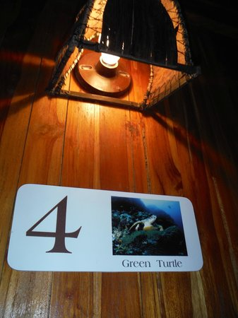 Hotel Tortuga Village: #4 The Green Turtle