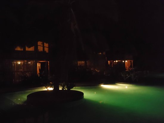 Hotel Tortuga Village: View of other bungalows from the pool