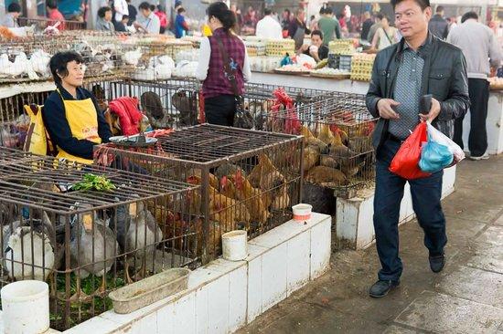 Yangshuo Cooking School: Yangshuo Market - Poultry