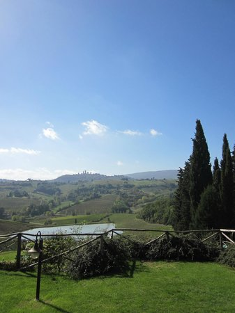 Walkabout Florence Tours: A view of San Gimignano from the Fattoria Poggio Alloro Vineyards