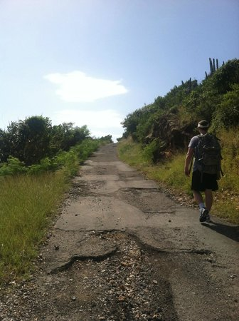 Virgin Islands Campground : A nice morning stroll