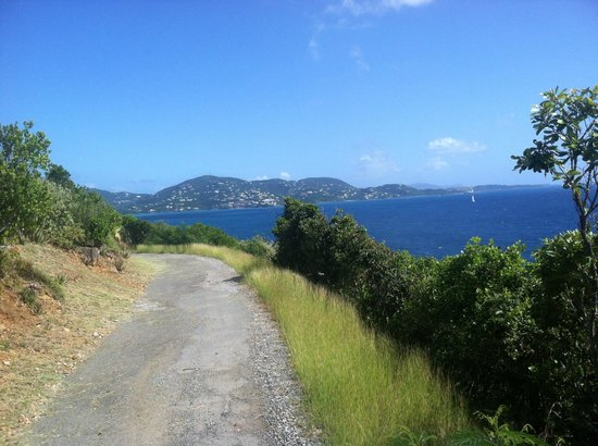Virgin Islands Campground : Road to the old Navy Base