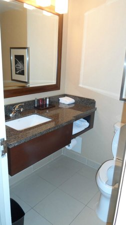 Detroit Marriott at the Renaissance Center: Counter area in bathroom.