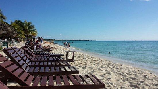 Playa Palancar: 20 de enero 2014