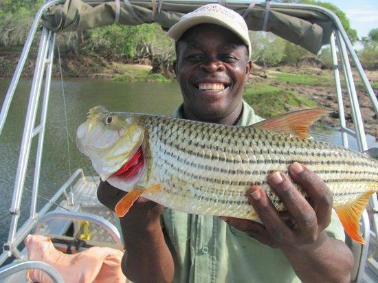 Wilderness Safaris Toka Leya Camp: Donald with the 7 lbs. Tiger Fish