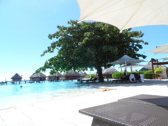 Moorea Pearl Resort & Spa: The pool area