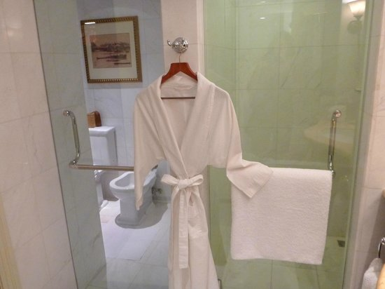 Park Hyatt Saigon: Bathroom - separate toilet (w/ bidet) and shower