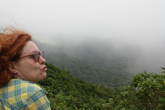 Monteverde Cloud Forest Biological Reserve: Overlooking the continential divide and the elven forest