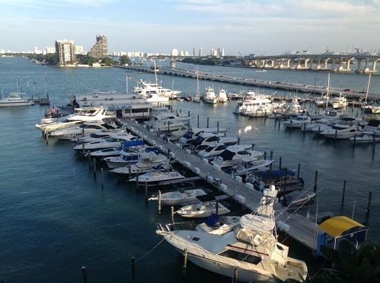 Miami Marriott Biscayne Bay: View from the pool deck.