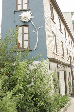 Hotel Le Vincent : Hiver ou printemps, le tournesol est toujour là!