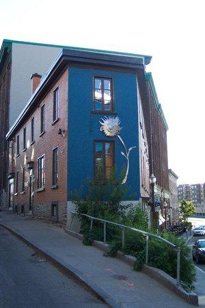 Hotel Le Vincent : Entre la rue Saint-Vallier Est et Arago il y a une fleur!