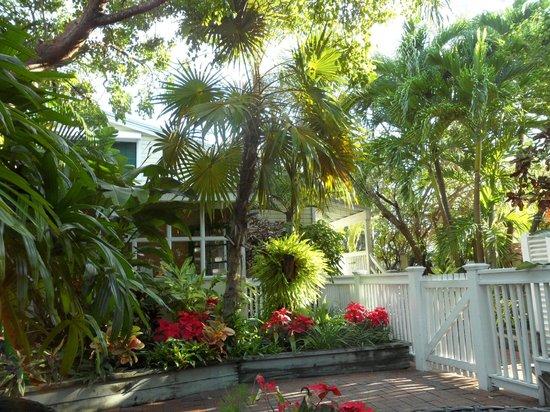 Merlin Guest House Key West: Breakfast area - one redeeming feature.