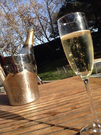 Knight Wine Tours: Chandon Visit