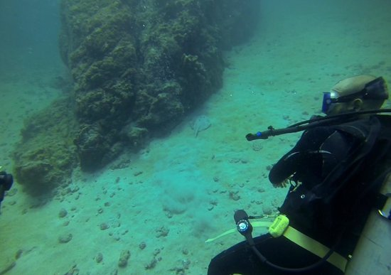 Costa Rica Dive and Surf: 4